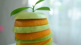 Φρέσκο πορτοκάλι από το αγρόκτημα φιλμ μικρού μήκους