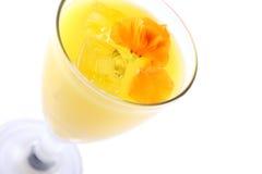 φρέσκο πορτοκάλι χυμού στοκ φωτογραφίες