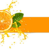 φρέσκο πορτοκάλι ανασκόπ&et Στοκ Εικόνα