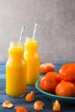 φρέσκο πορτοκάλι χυμού επάνω από το απομονωμένο tangerine χυμού λευκό όψης Στοκ Εικόνα