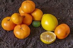 Φρέσκο πορτοκαλί εσπεριδοειδές λεμονιών στο εδαφολογικό έδαφος φ στοκ εικόνα με δικαίωμα ελεύθερης χρήσης