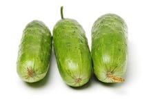 Φρέσκο πράσινο αγγούρι στοκ εικόνες