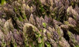 Φρέσκο πράσινο και υγιές σπαράγγι στις δέσμες Στοκ Φωτογραφία