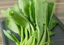 Φρέσκο πράσινο κινεζικό λάχανο σε έναν δίσκο Στοκ Εικόνες