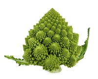 Φρέσκο πράσινο κουνουπίδι μπρόκολου romanesco με Στοκ Εικόνες