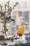 φρέσκο πράσινο τσάι Φλυτζάνι τσαγιού με το πράσινο φύλλο τσαγιού στον ξύλινο πίνακα Τσάι με το λεμόνι Στοκ Φωτογραφία