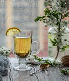 φρέσκο πράσινο τσάι Φλυτζάνι τσαγιού με το πράσινο φύλλο τσαγιού στον ξύλινο πίνακα Τσάι με το λεμόνι Στοκ Εικόνα
