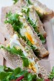 φρέσκο σάντουιτς σαλάτας αυγών Στοκ εικόνα με δικαίωμα ελεύθερης χρήσης
