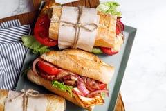 Φρέσκο σάντουιτς bahn-mi baguette που ορίζεται Στοκ Εικόνα