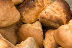 Φρέσκο σπίτι που γίνεται το γιγαντιαίο ψωμί Στοκ Εικόνα