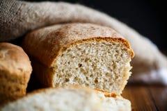 Φρέσκο σπιτικό ψωμί φαγόπυρου Στοκ εικόνα με δικαίωμα ελεύθερης χρήσης