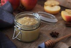 Φρέσκο σπιτικό applesauce με τα μήλα Στοκ Εικόνα