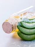 Φρέσκο συσσωρευμένο aloe φύλλο Στοκ φωτογραφία με δικαίωμα ελεύθερης χρήσης