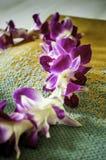 Φρέσκο της Χαβάης Lei Στοκ Φωτογραφίες