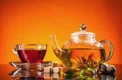 φρέσκο τσάι Στοκ φωτογραφίες με δικαίωμα ελεύθερης χρήσης