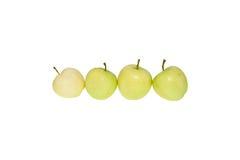 Φρέσκο φυσικό πράσινο μήλο στη γραμμή Στοκ Εικόνα
