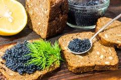 Φρέσκο χαβιάρι για τα πρόχειρα φαγητά και το οινόπνευμα Ρωσικό ορεκτικό Στοκ εικόνα με δικαίωμα ελεύθερης χρήσης