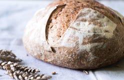 Φρέσκο χειροτεχνικό ψωμί μαγιάς στην πετσέτα κουζινών Στοκ εικόνα με δικαίωμα ελεύθερης χρήσης