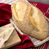 Φρέσκο χειροτεχνικό ψωμί Στοκ Εικόνα
