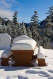 φρέσκο χιόνι Στοκ Εικόνες