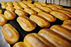 Φρέσκο ψωμί από το φούρνο Στοκ φωτογραφίες με δικαίωμα ελεύθερης χρήσης