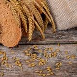 Φρέσκο ψωμί με τα αυτιά μια σίκαλη στοκ φωτογραφία με δικαίωμα ελεύθερης χρήσης