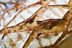 Φρέσκο ψωμί με την κρούστα στοκ φωτογραφία