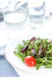 φρέσκο ύδωρ σαλάτας στοκ φωτογραφίες