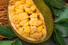 Φρέσκο ώριμο jackfruit Το φρέσκο γλυκό τμήμα Jackfruit έτοιμο για τρώει Στοκ Εικόνες