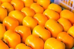 Φρέσκο ώριμο persimmon με τον κλάδο και τα φύλλα Στοκ φωτογραφίες με δικαίωμα ελεύθερης χρήσης