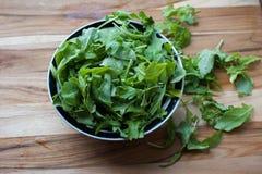 Φρέσκο Arugula έτοιμο για μια θερινή σαλάτα Στοκ φωτογραφία με δικαίωμα ελεύθερης χρήσης