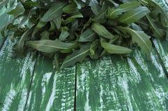 Φρέσκο arugula ξύλινο επιτραπέζιο παλαιό σε έναν πράσινο Στοκ εικόνες με δικαίωμα ελεύθερης χρήσης