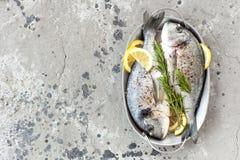 Φρέσκο dorado ψαριών Ακατέργαστα ψάρια dorado με το λεμόνι και το δεντρολίβανο Ψάρια τσιπουρών ή dorada Στοκ εικόνα με δικαίωμα ελεύθερης χρήσης
