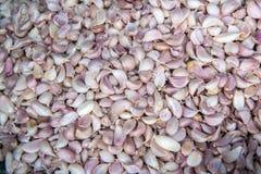 Φρέσκο garlics για την πώληση στην αγορά Στοκ Φωτογραφία