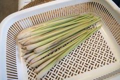 φρέσκο lemongrass Στοκ Φωτογραφία