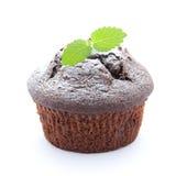 φρέσκο muffin Στοκ Εικόνες