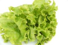 φρέσκο salat 2 Στοκ Εικόνες