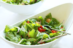 φρέσκο salat Στοκ εικόνες με δικαίωμα ελεύθερης χρήσης