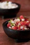 φρέσκο salsa Στοκ φωτογραφίες με δικαίωμα ελεύθερης χρήσης
