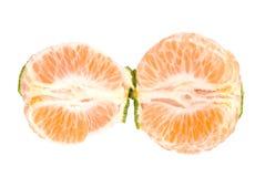 φρέσκο tangerine φετών στοκ εικόνες