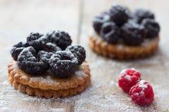 Φρέσκο tartlet ή κέικ μούρων Στοκ Φωτογραφία
