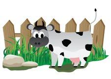 φραγή αγελάδων παλαιά Στοκ Εικόνες