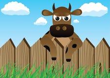 φραγή αγελάδων Στοκ Φωτογραφία