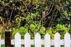 φραγή μπαμπού Στοκ φωτογραφία με δικαίωμα ελεύθερης χρήσης