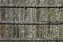 φραγή mossy στοκ εικόνες