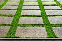 Φραγμοί κήπων Στοκ φωτογραφία με δικαίωμα ελεύθερης χρήσης