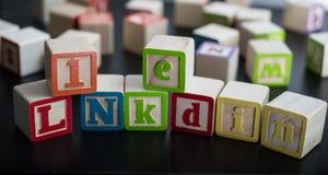 Φραγμοί παιδιών με τη λέξη LinkedIn ως κοινωνικό επιχειρησιακό networ στοκ φωτογραφίες με δικαίωμα ελεύθερης χρήσης
