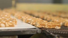 Φραγμοί nougat με τα φυστίκια στη γραμμή παραγωγής απόθεμα βίντεο