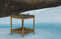 Φραγμός πάγου Στοκ Φωτογραφίες
