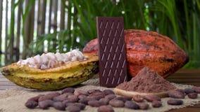 Φραγμός πικρής σοκολάτας, ακατέργαστα φρούτα κακάου, φασόλια κακάου, σκόνη κακάου στον ξύλινο πίνακα φιλμ μικρού μήκους